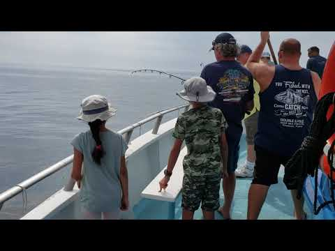 Double Eagle Boat  Kingfish Clearwater Florida