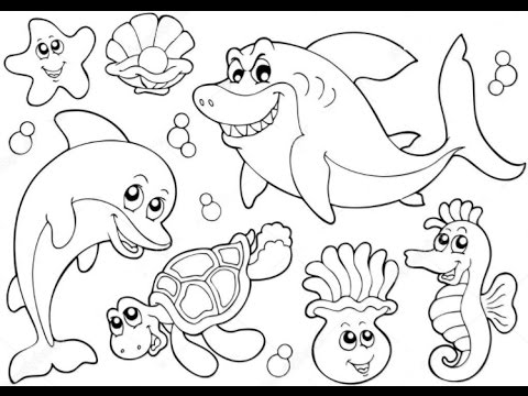 Kids learn ocean animals how to draw sea animals learn colors