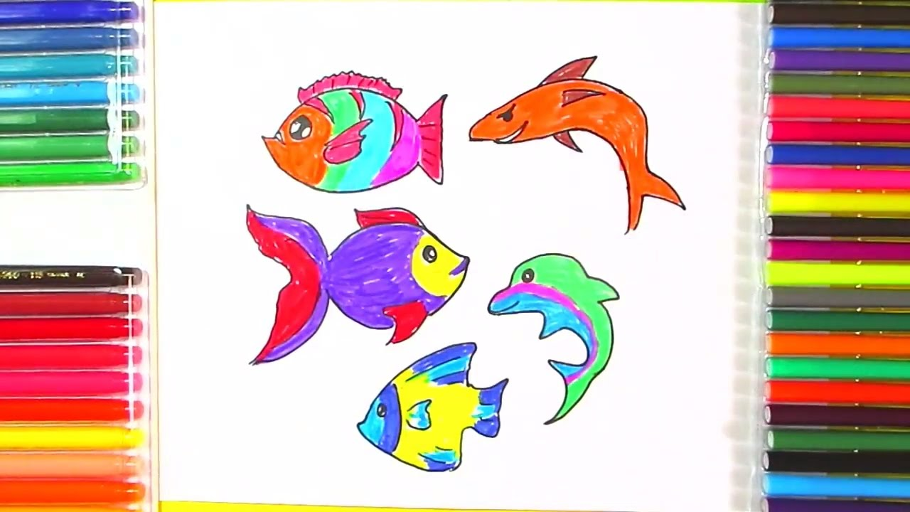 How To Draw Fish   Drawing And Coloring Fish In Different ...