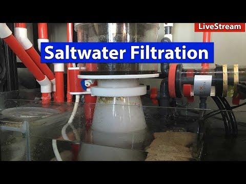 Evolution of Saltwater Aquarium Filtration Systems