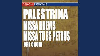 Missa Brevis: VII. Agnus Dei II