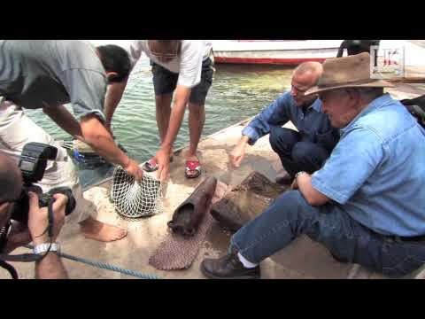 Underwater Archaeology: Excavating