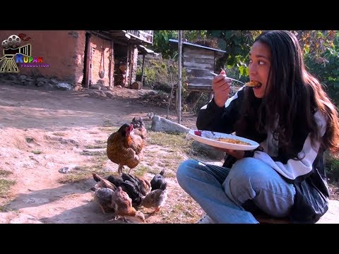RURAL LIFE IN SIKKIM, INDIA  ||  Part  -  29 ...
