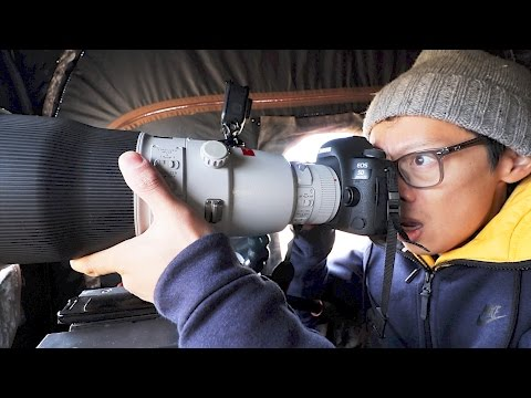Canon 600mm f/4L II Hands-on + NAT GEO Wild!