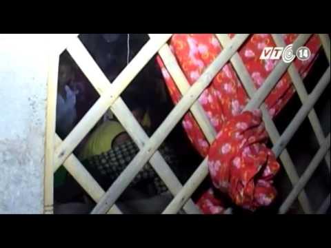 VTC14_Sét đánh làm chết một người tại Quảng Trị