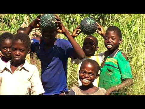 Adam's Malawi Trip Feb-May 2016 - Perfect Ruin