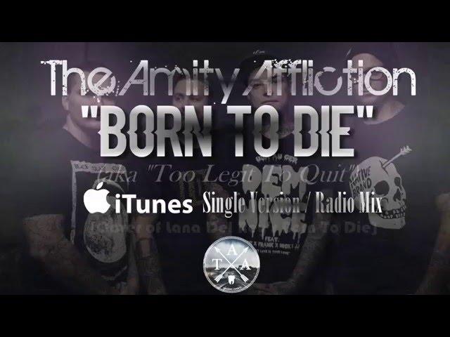 The amity affliction flowerbomb перевод