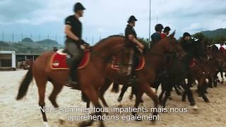 Préparation - Vorbereitung Marché-Concours Saignelégier 3