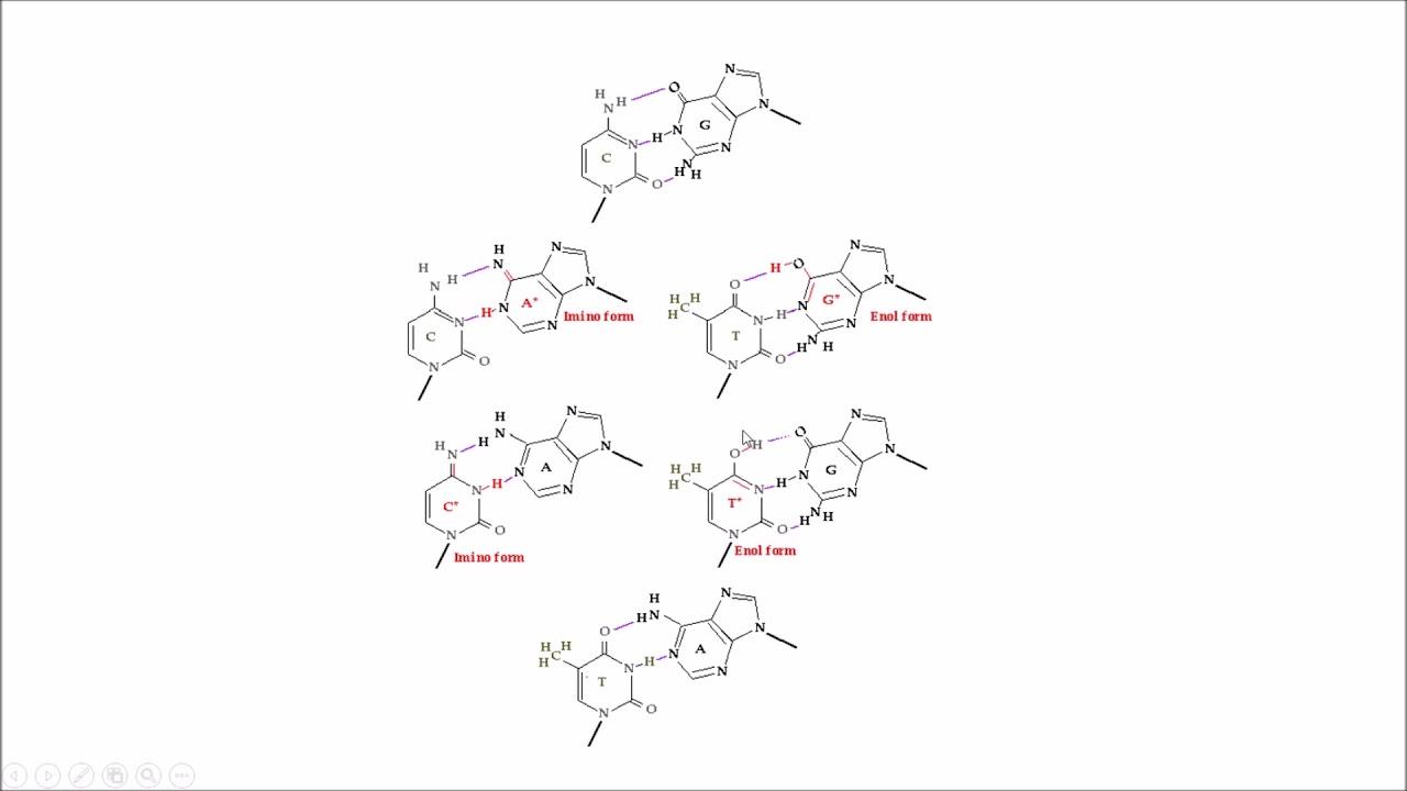 Tautómeros Tautomers Replicación Replication Dna Structure