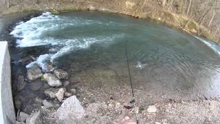 fishing for rainbow trout at roaring river state park cassville missouri