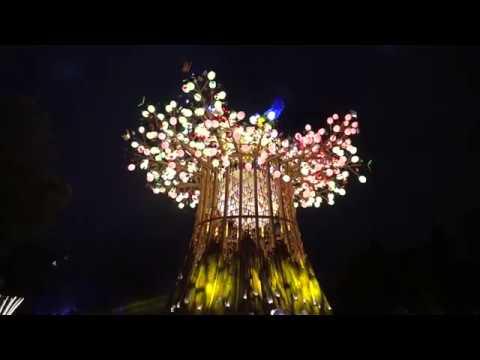 2020台灣燈會在台中 后里森林園區 森生守護-光之樹