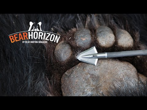 Batman | Hunt For 550-pound Oklahoma Black Bear | BEAR HORIZON Episode 3