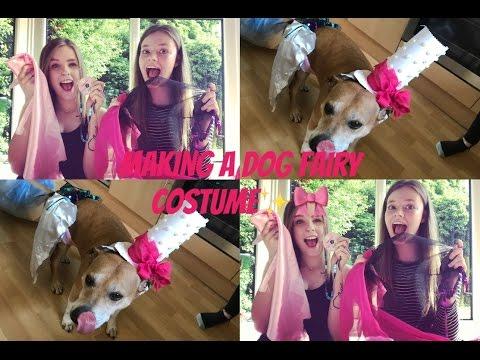 DIY   MAKING A DOG FAIRY COSTUME!?!