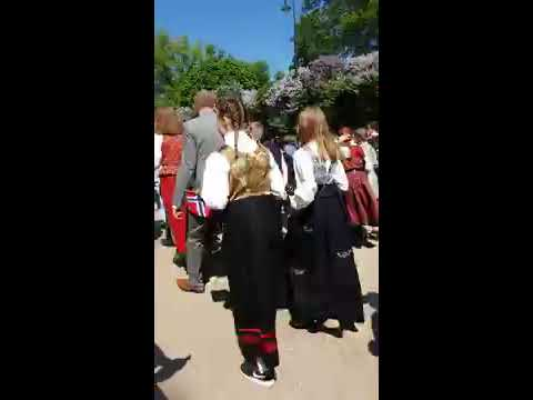 Norway national day parade