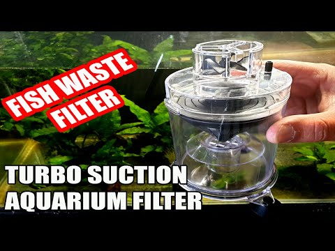 Setting Up Turbo Suction Aquarium Filter (Fish Waste Filter)