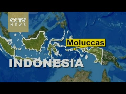Strong undersea tremor triggers mini-tsunami in Indonesia