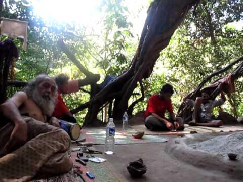 Arambol  Big Banyan tree behind sweetwater lake  YouTube