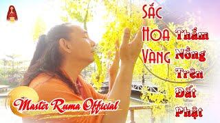 Sắc Hoa Vàng Thắm Nồng Trên Đất Phật | Master Ruma Official