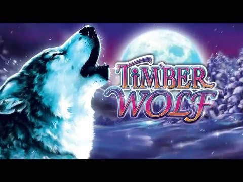 Wonder 4 Stars Timber Wolf Slot Machine Bonus Big Win