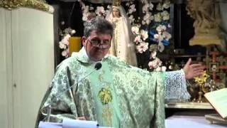 Ks. Piotr Natanek - Kazanie o Tajemnicy Mszy Świętej wg. św. Ojca Pio 17.07.2013
