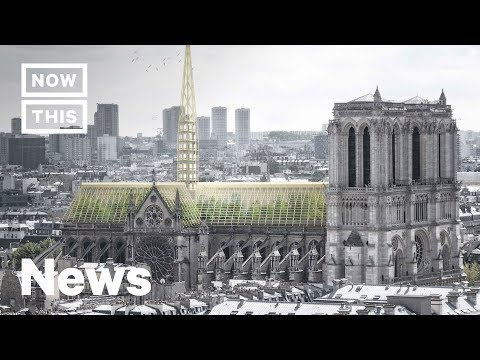 How Notre Dame Might Be Redesigned and Rebuilt | NowThis