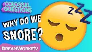 Why Do We Snore? | COLOSSAL QUESTIONS