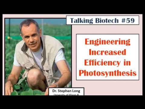 Talking Biotech 059 Increasing Photosynthesis Efficiency