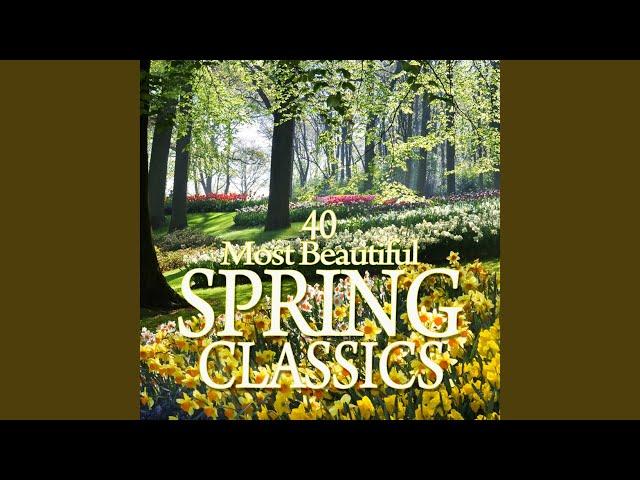 Appalachian Spring : II Allegro, vigoroso