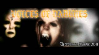 VOICES OF DARKNESS BY NECROMARE MUSIC 2011