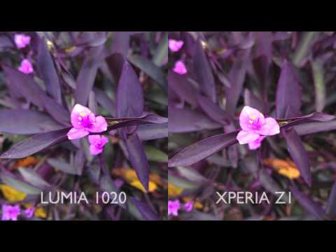 41MP Nokia Lumia 1020 vs 20.7MP Sony Xperia Z1 (With Images and Video Comparison)