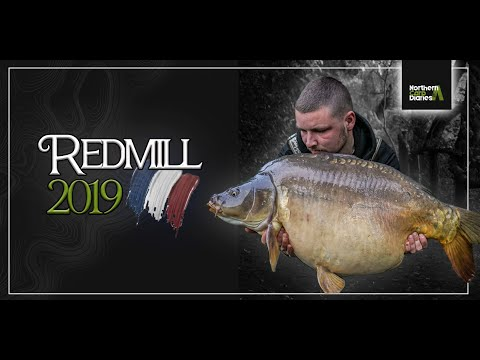 Northern Carp Diaries - Redmill   2019 **OFFICIAL**