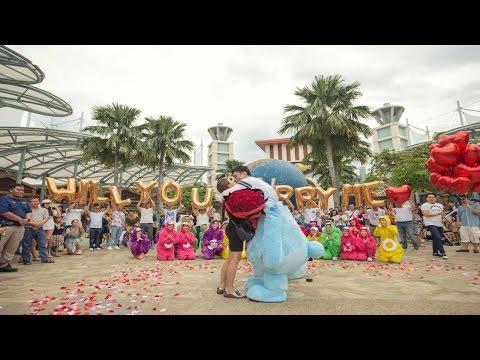 THE CAREBEAR PROPOSAL - Public Flash Mob Proposal Singapore - Andrew & Anna (Link in description)