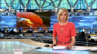 Выпуск новостей в 9:00 сегодня, 7 июля 2017 года. Новости. Первый канал