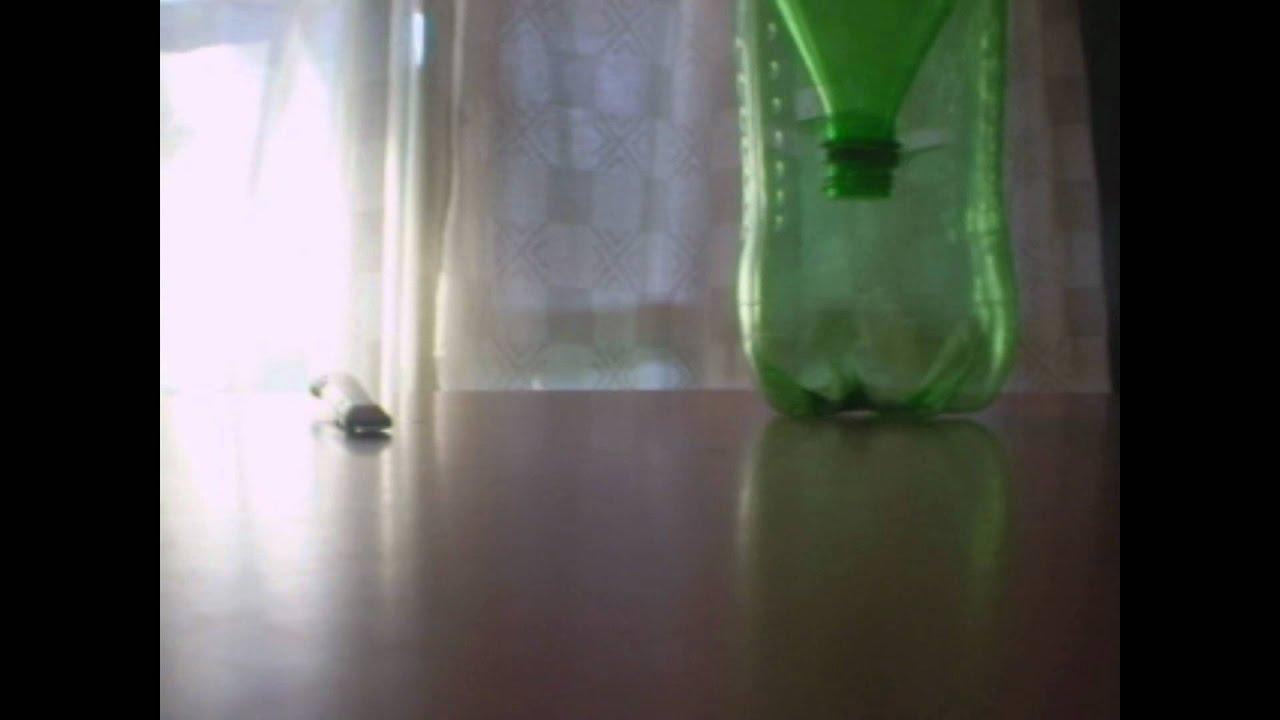 Como fabricar una trampa para moscas casera y efectiva - Trampa casera para moscas ...
