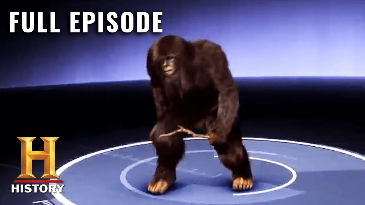 Download MonsterQuest: MYSTERIOUS APE ISLAND (S3, E11) | Full Episode | History
