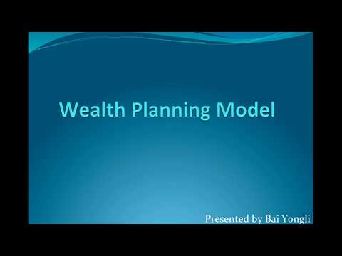The Wealth Planning Model
