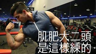 肌肥大手臂訓練 二頭篇