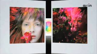 AV:in - Создание контента: Дизайн и теория цвета