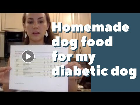 Making Homemade Dog Food For My Diabetic Dog - LIVE Replay