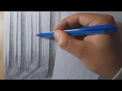 How to Draw a Forest with Pencil Step by Step