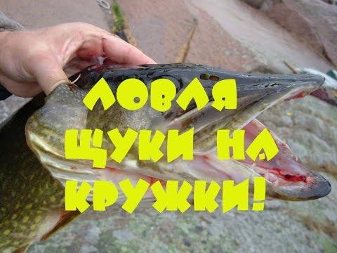 охота и рыбалка на кружки