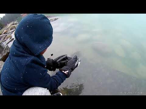 Alberta, Canada Trip 2017!
