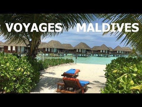 VOYAGES AUX MALDIVES - plage paradisiaque, lagon, requin et pilotis -