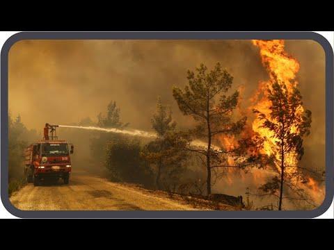 Türkei & Südeuropa brennen! Warum? | #analyse