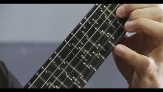 Microtonal Guitar (Fixed Fret) - Tolgahan Çoğulu