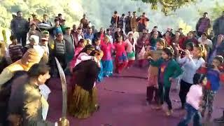 Diwali videos of village dhoira   jai nag devta