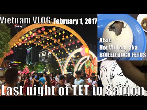 February 1, 2017 Vietnam VLOG: Last night of TET Festival in Saigon