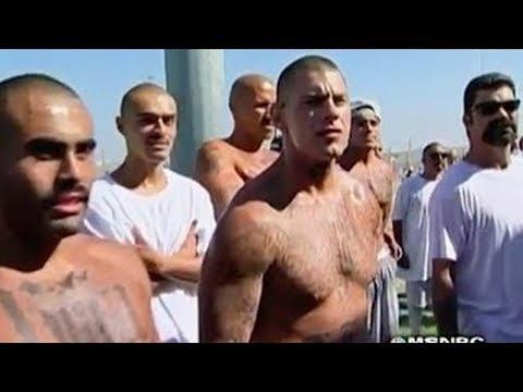 Documentaries Best |The Best Documentary Ever - Life in Prison The Code