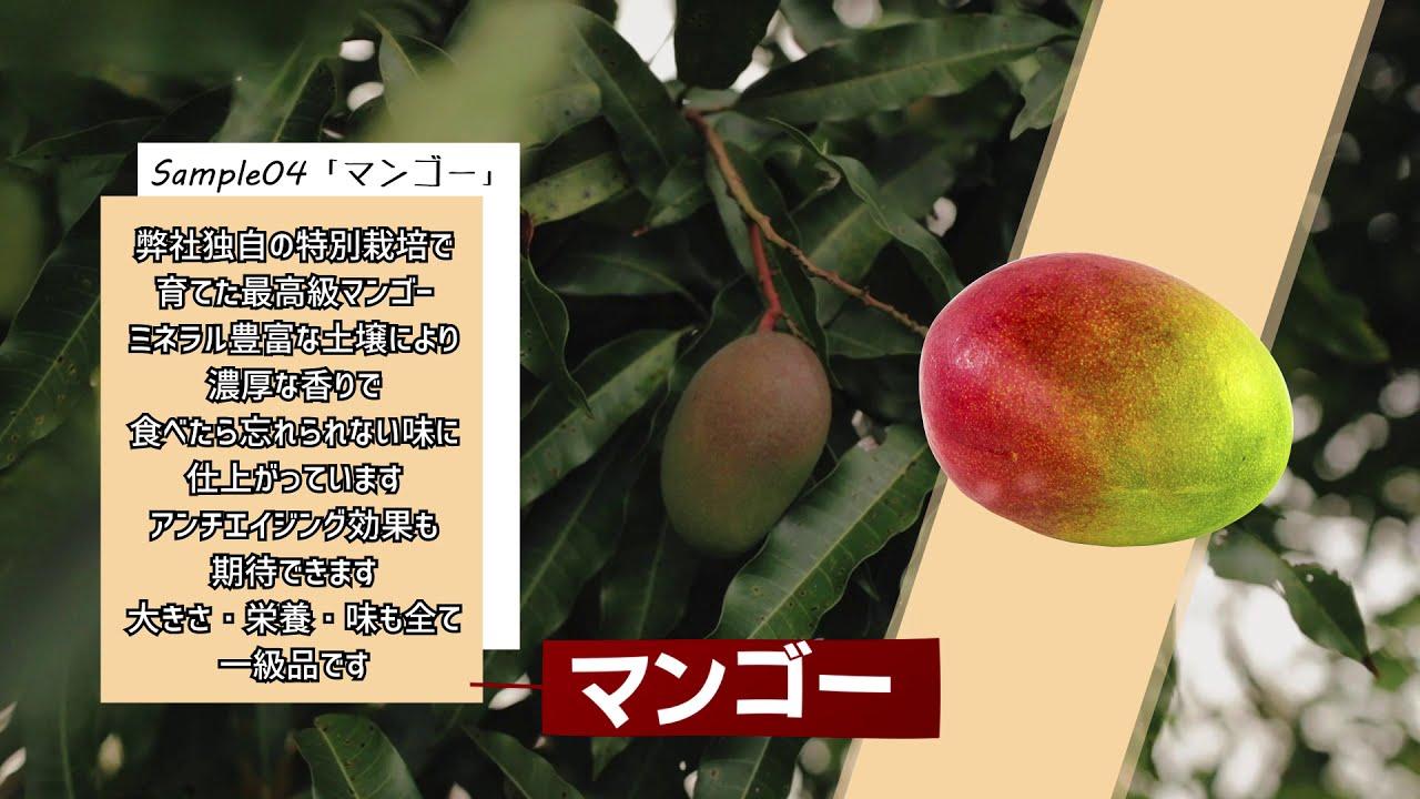 「商品/フルーツ紹介」サンプル