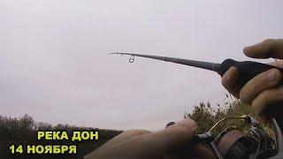 Рыбалка на спиннинг Ловля осенью на реке Дон Окунь в ноябре Закрываем сезон